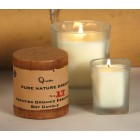 Organic Essential Oil Soy Candles - Love Potion